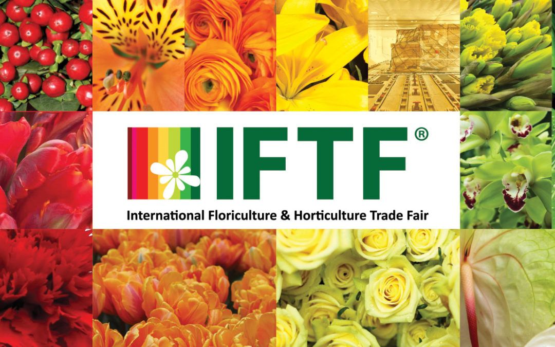 IFTF(International Flower Trade Fair)